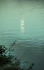 20170509-04_Moon Reflection - Daventry Reservoir