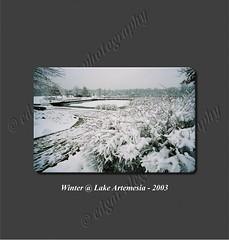 Winter @ Lake Artemesia 2003
