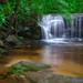 Wildcat Branch Falls by rmutschink