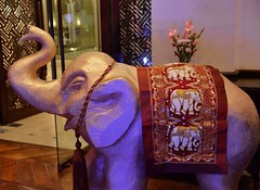 Draw your pleasure, paint your pleasure, and express your pleasure strongly~!! 🐘 #monday #evening #ramadan #at #sarenahotel #artistic #artificial #elephant #flowers #draw #your #pleasure #paint  #express #strongly #quote #click #focus #smile #lov