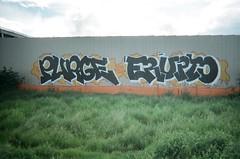 purge erupto