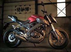 Yamaha MT-125 2014 - 12