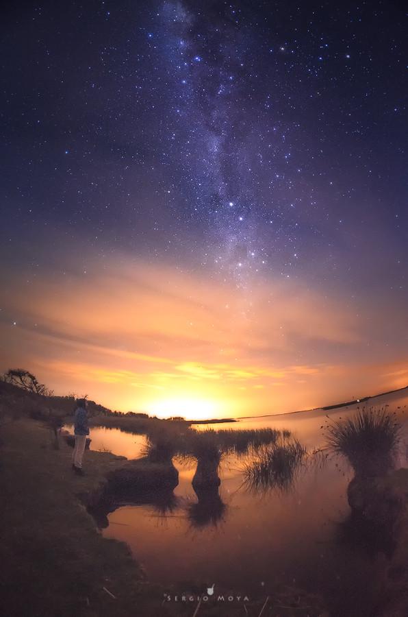 Nocturna - Sergio Moya