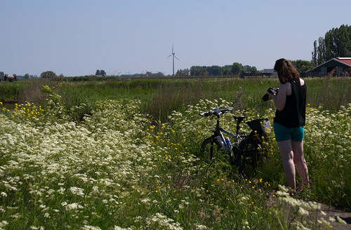 Griedehoeke Natuurmonumentum fietstocht