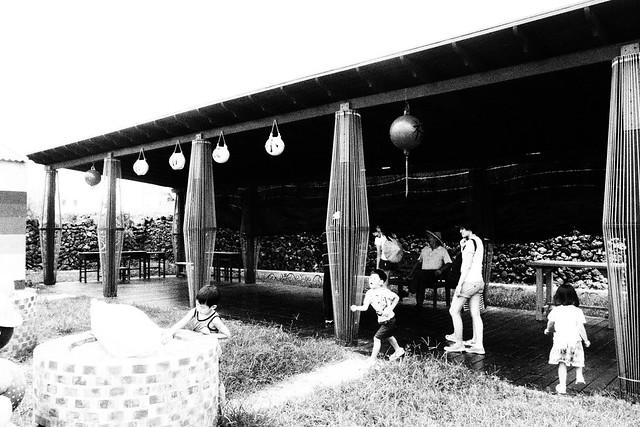 20170602拍攝於南寮038