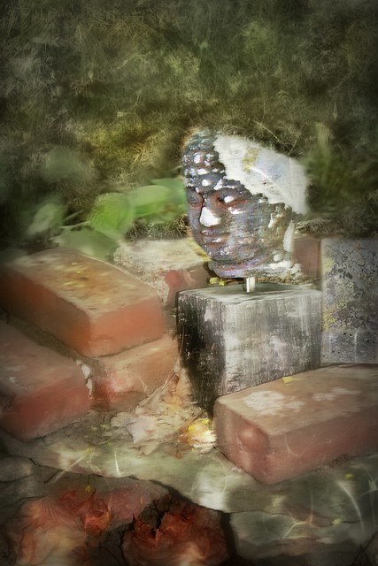 Buddha Head Statue ☸ Rescued and Reclaimed