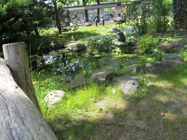 00738738 Berliner Zoo 5, Canon POWERSHOT SX260 HS
