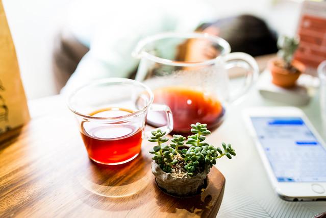 coffee sind|台北大安–存在是為了療癒/有肉 Succulent店中店
