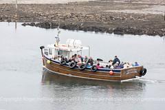 Farne Islands and Northumberland