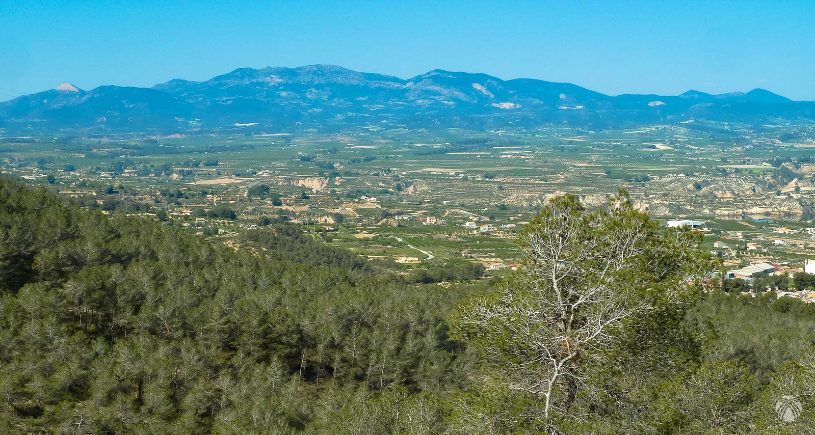 Vistas de la cuenca del río Pliego: a la izquierda la Peñarrubia, en el centro domina la Sierra de Pedro Ponce y a la derecha está la Lavia