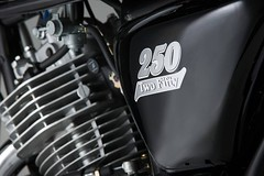 Mash 250 Two Fifty 2017 - 15