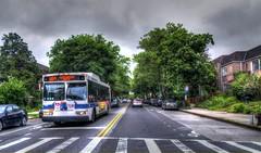 NYCT - Q64 Bus - Kew Gardens Hills, New York, NY.