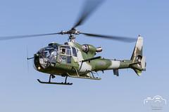 Gazelle 50th Commemorative Fly-in