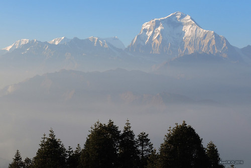 dhaulagiri montagnes nepal poonhill