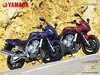 Yamaha 1000 FAZER FZS 2003 - 9