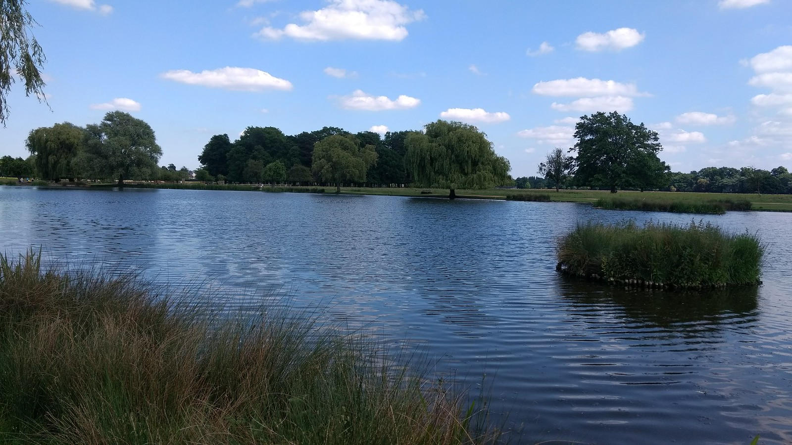 Hampton Wick Pond