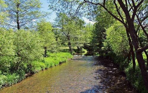 ilmtalradweg deutschland thuringia ilm germany ngc river radweg