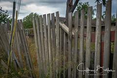 2017 Abandon House  Album