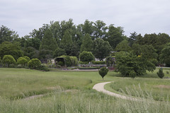 National Arboretum (252)