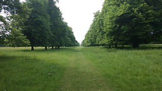 Towards the Palace