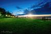 Wyandotte Bishop Park Black n Blue sunring w PHOTOLOGO