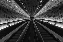 Escalator to the Music