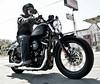 Harley-Davidson XL 883 SPORTSTER IRON 2014 - 2