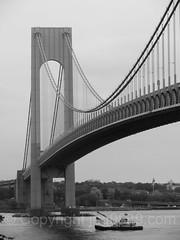 2017 Fleet Week - Hayward U.S. Army Corps of Engineers Debris Collection Vessel passing the Verrazano-Narrows Bridge, New York City