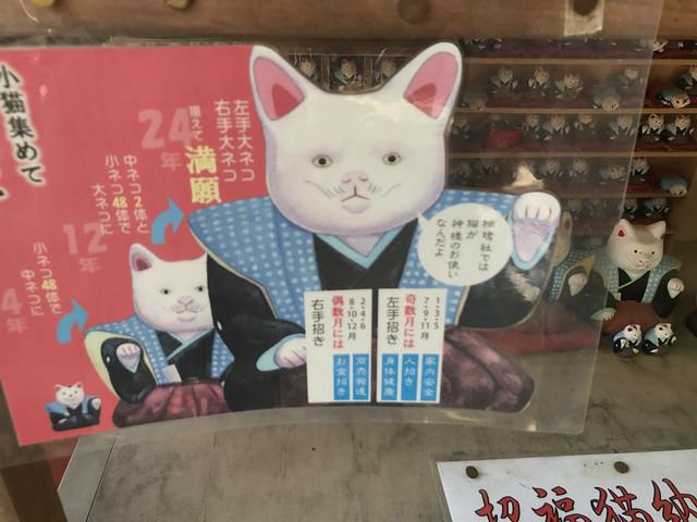 sumiyoshitaisya84