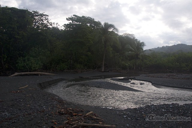 view 0006 Corcovado, Osa peninsula, Costa Rica