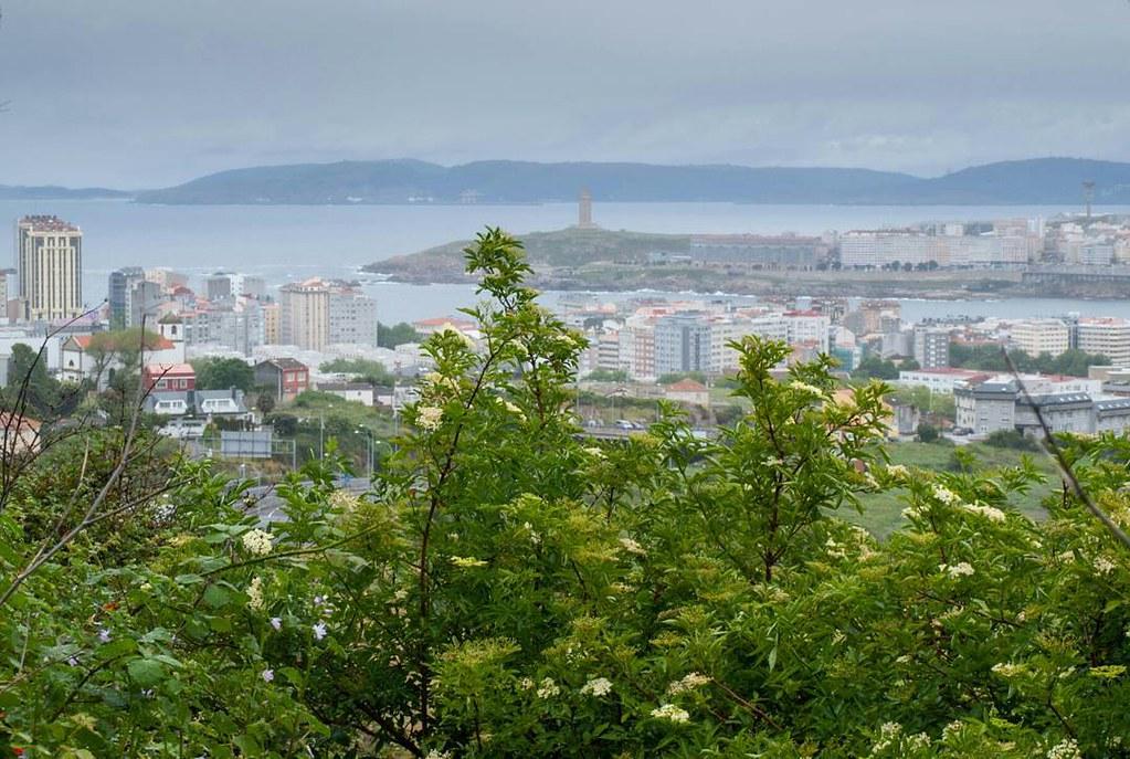 Buscando vistas distintas de la ciudad. #Coruña #olympus #photography