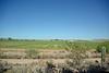 Growing Crops in the Desert