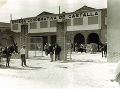 1 Bodega Cooperativa Castalla