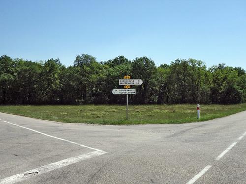 Forêt de la Hardt