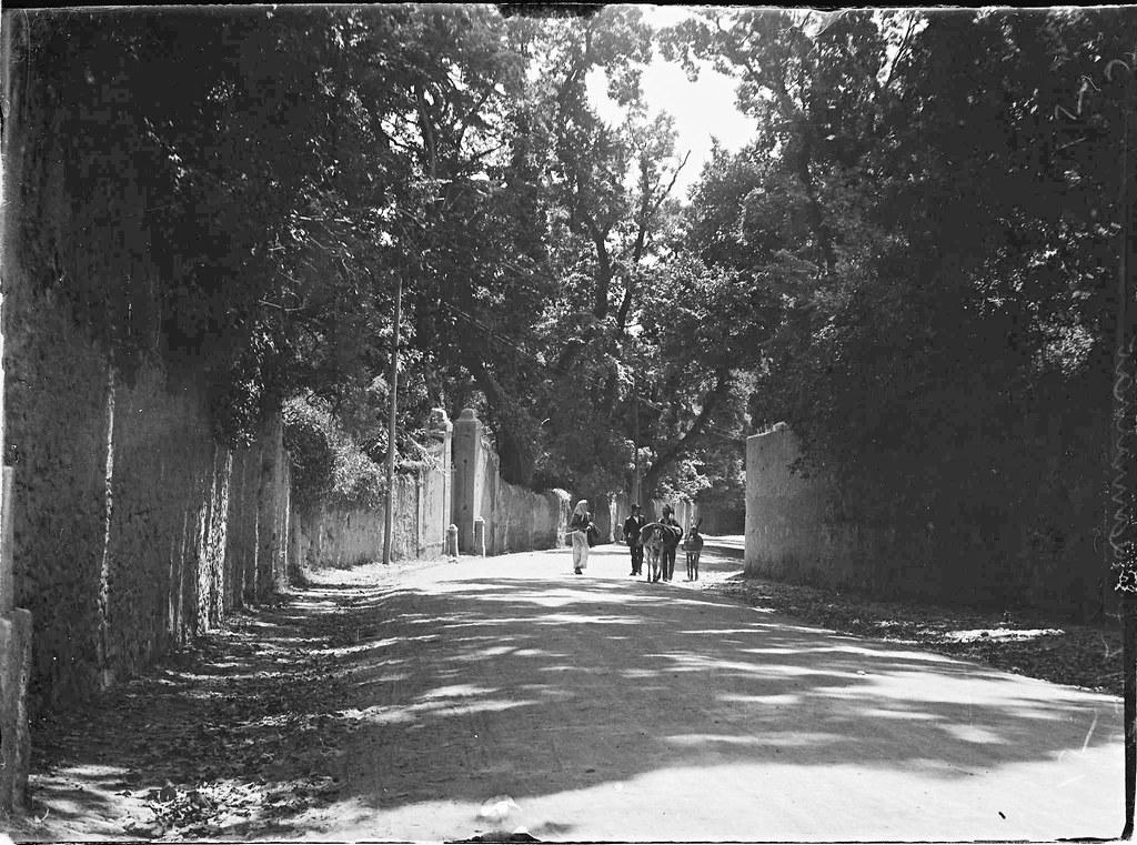 Estrada do Ramalhão, Sintra (Eduardo Portugal, 1924)