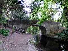 GOC Tring & Wendover Woods 079: Harelane Bridge, Wendover Arm, Aston Clinton