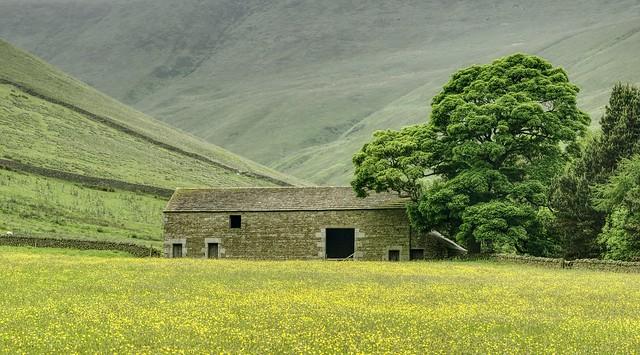 Buttercup Barn, Nikon D5600, AF-S DX VR Nikkor 55-300mm 4.5-5.6G ED