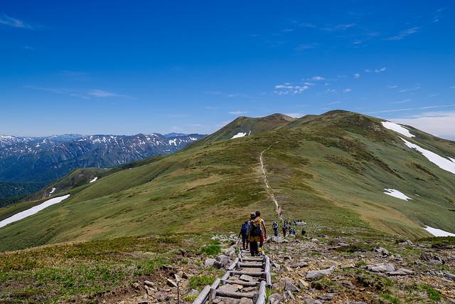 平標山へ登り返す途中に振り返り仙ノ倉山