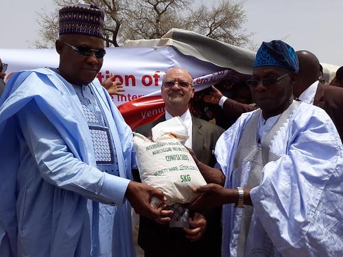 nigeria agriculture iita africa