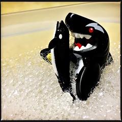 bath time with Orca