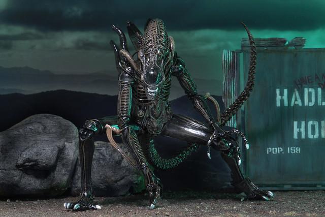 抱臉體、破胸體、成體異形戰士通通有!!NECA 異形2【異形戰士組合包】Ultimate Alien Warrior Assortment