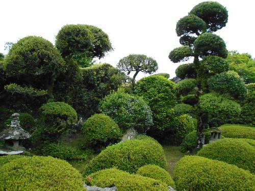 jp-chiran-jardin5 (4)