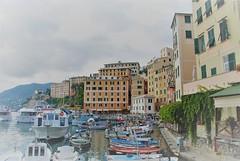 Porto di Camogli