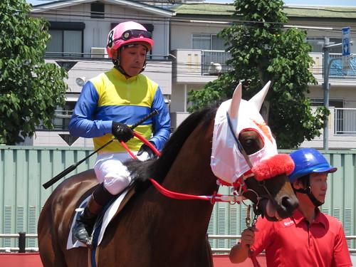 名古屋競馬場の戸部尚実騎手