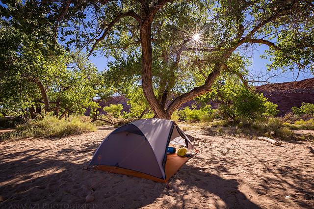 Big Stick Camp