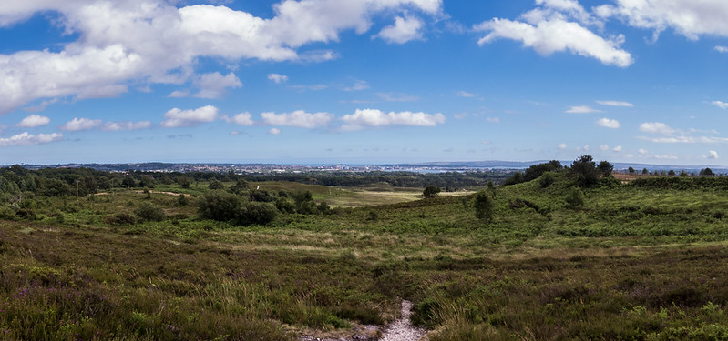 Panorama over Upton Heath