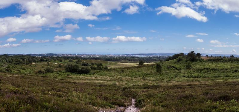 Panorama over Upton Heath