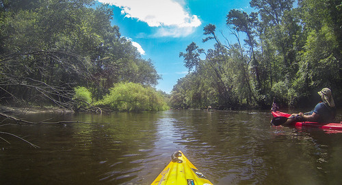 Edisto River Rope Swing and Beer Commercial Float-30