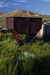 Wild Iris and Ore Cart