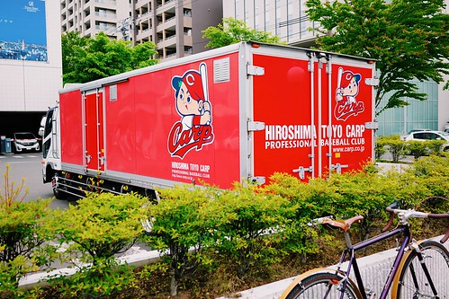 Hiroshima carp